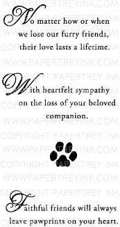 pet loss sympathy