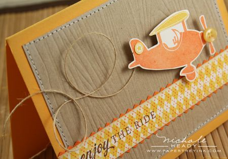 More images & Papertrey Ink - Woodgrain Impression Plate: Papertrey Ink Clear ...