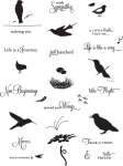 Birds of a Feather Stamp Set