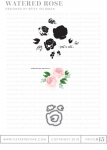 Watered Rose Stamp Set & Die Collection