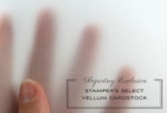 PTI Stamper's Select Vellum (#44)