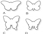 Papertrey Ink - Beautiful Butterflies Die Collection (set of 4)